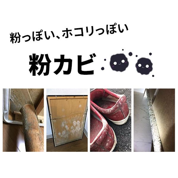粉カビ_ホコリカビ