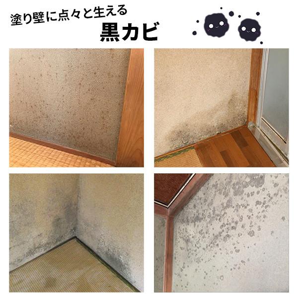 砂壁土壁漆喰珪藻土のカビ