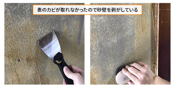 下地にカビが発生していたので砂壁を剥がしている